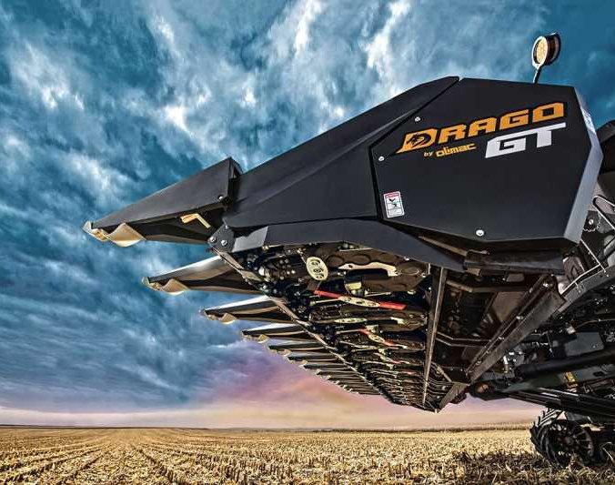 Drago GT Header.jpg
