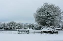 Beautiful views at Everley