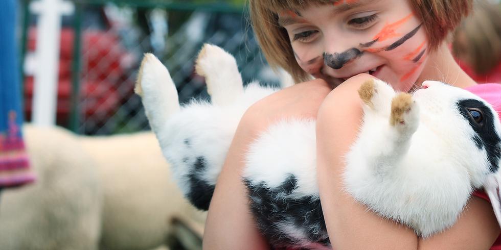 Animals, Animals Show & Planetarium