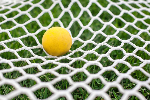 Goal Net: 6mm for 6' Goals
