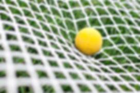 3mm Lacrosse Net