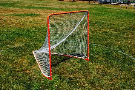 Lacrosse Practice Goal