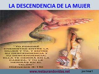 REVELACIONES 12