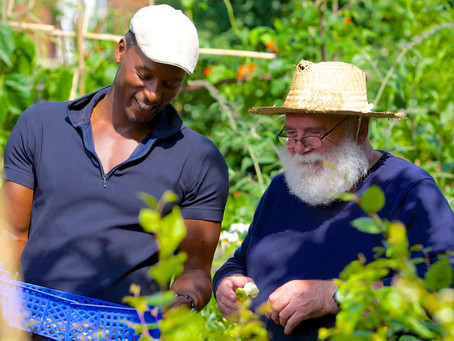 Green therapy: how gardening is helping to fight depression