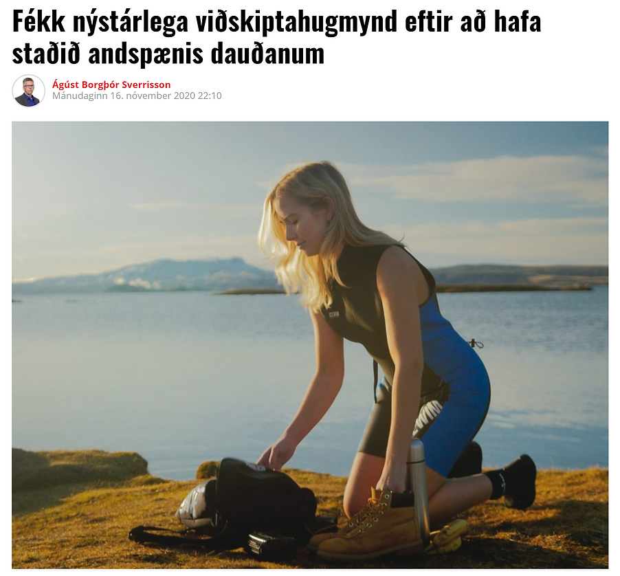 VD_ICELAND.PNG