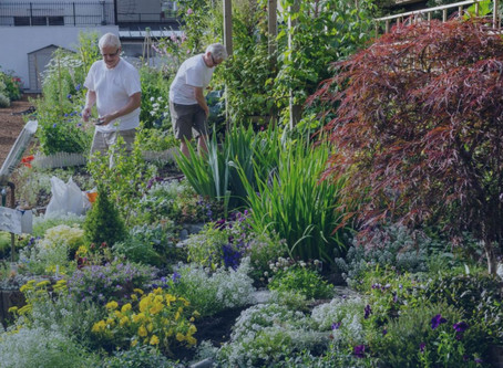 Gardening could be the hobby that helps you live to 100