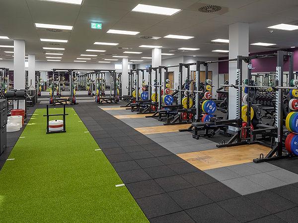 gym-strength.jpg
