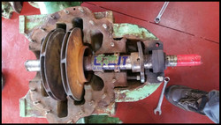 Reconditioning of sea water pump