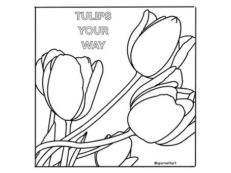 Free Tulip Coloring Sheets!