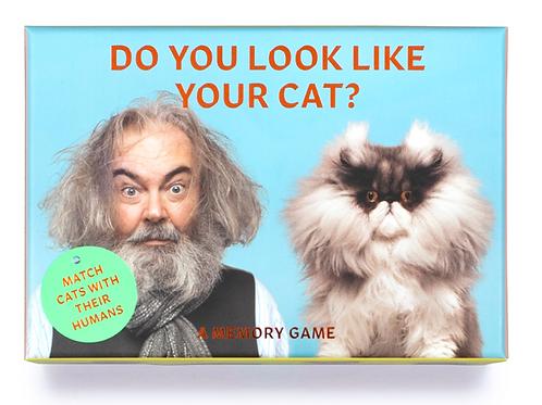 Do You Look Like Your Cat muistipeli