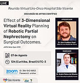 Effect of 3-Dimensional Virtual Reality Planning of Robotic Partial Nephrectomy on Surgical Outcomes