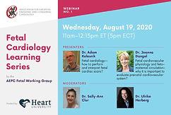 Fetal Cardiology Learning Series