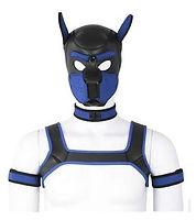 adults neoprene puppy hood custom animal