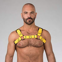 leather bulldog harness with color.jpg