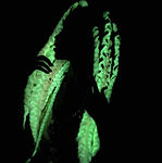 glow in the dark braided weave.jpg
