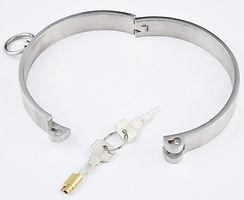 lockable stainless steel collar.jpg