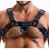 fetish gear colour coded h front harness