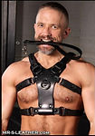 mr s leather pit bull chest harness - bl