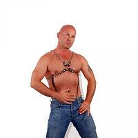 chain half harness.jpg