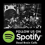 DBC Spotify.jpg