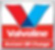 VIOC Logo.png