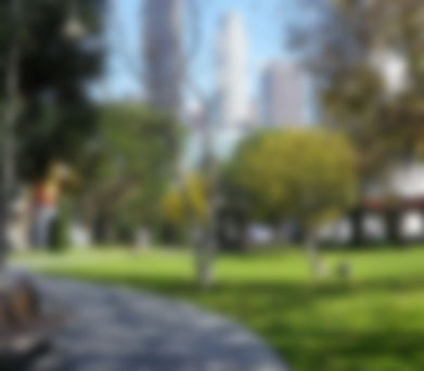 park background image.jpg
