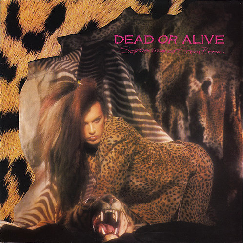 Dead Or Alive – Sophisticated Boom Boom