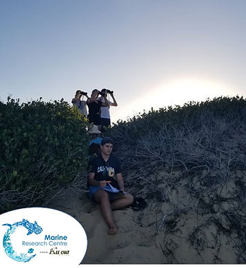 HBW dune.jpg