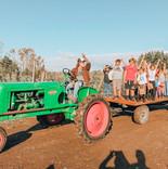 Home Farm Community Party