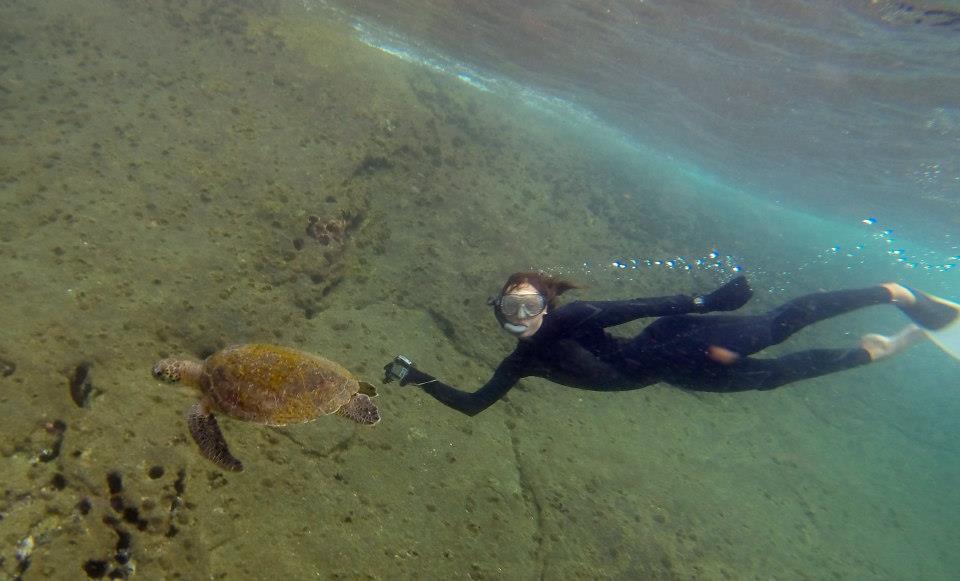 Mergulhando com tartaruga