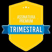 app trimestral v2.png