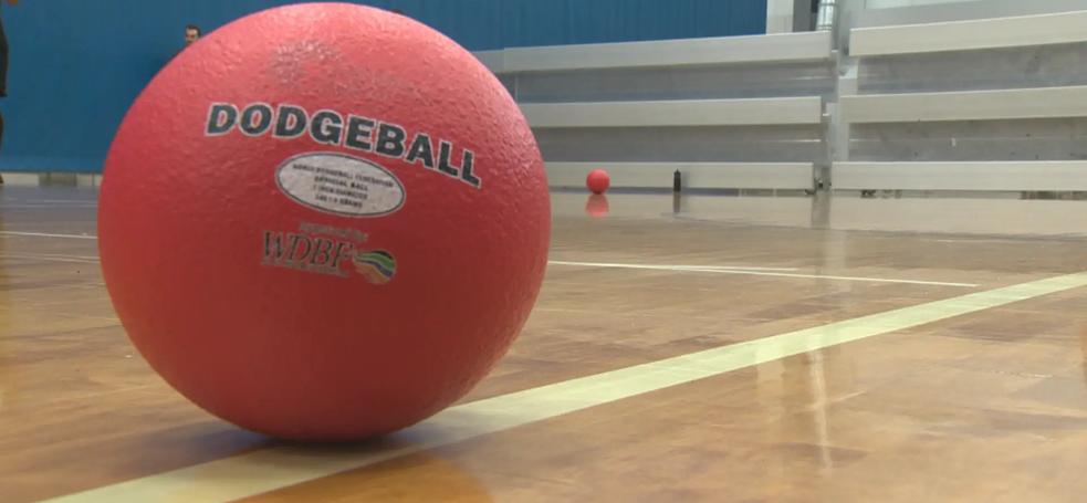 Dodge ball ball.webp