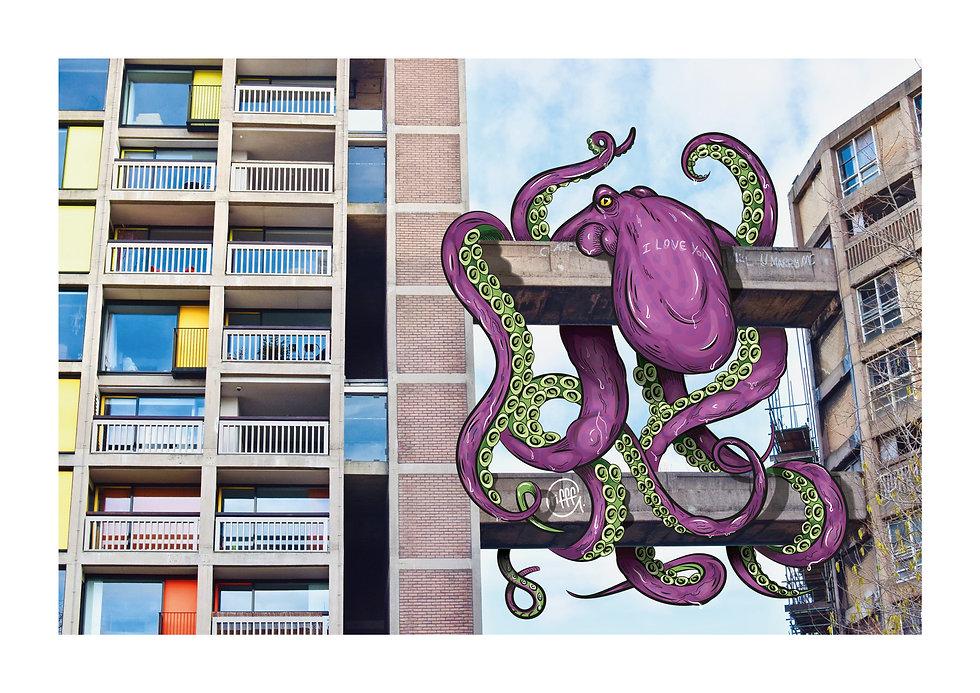 1606667641179_Park-Hill-Octopus.jpg