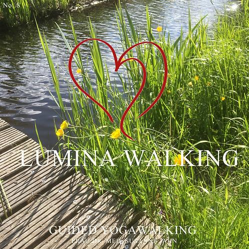 "Lumina-Walk VIII "" Lebensfreude"""