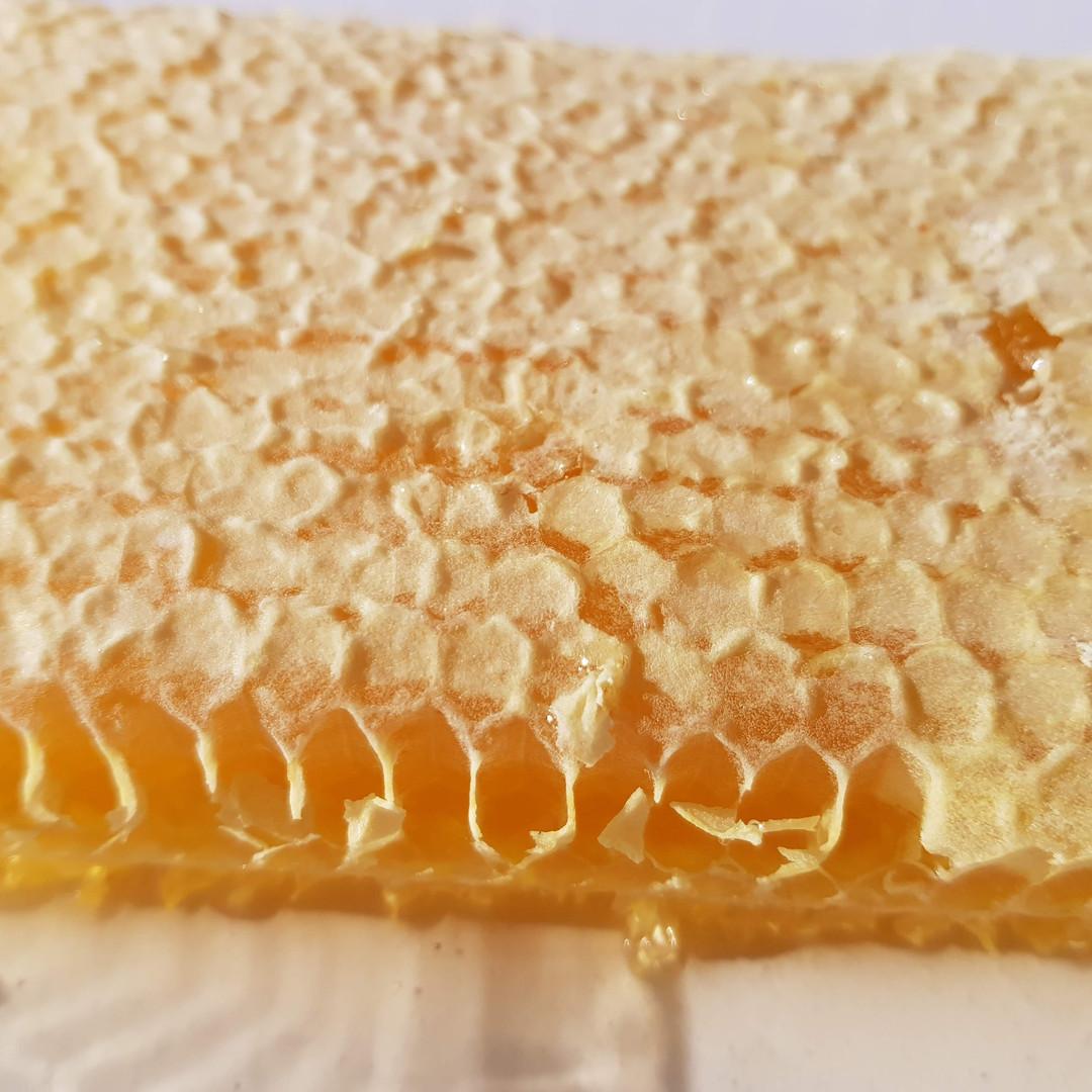 Miel de sarriette en rayon