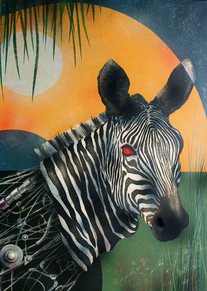 Zebra macchina