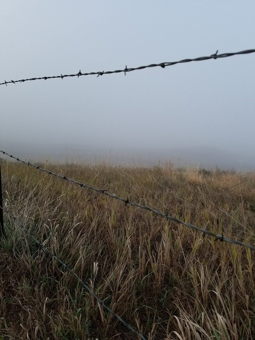 Fog and Fences