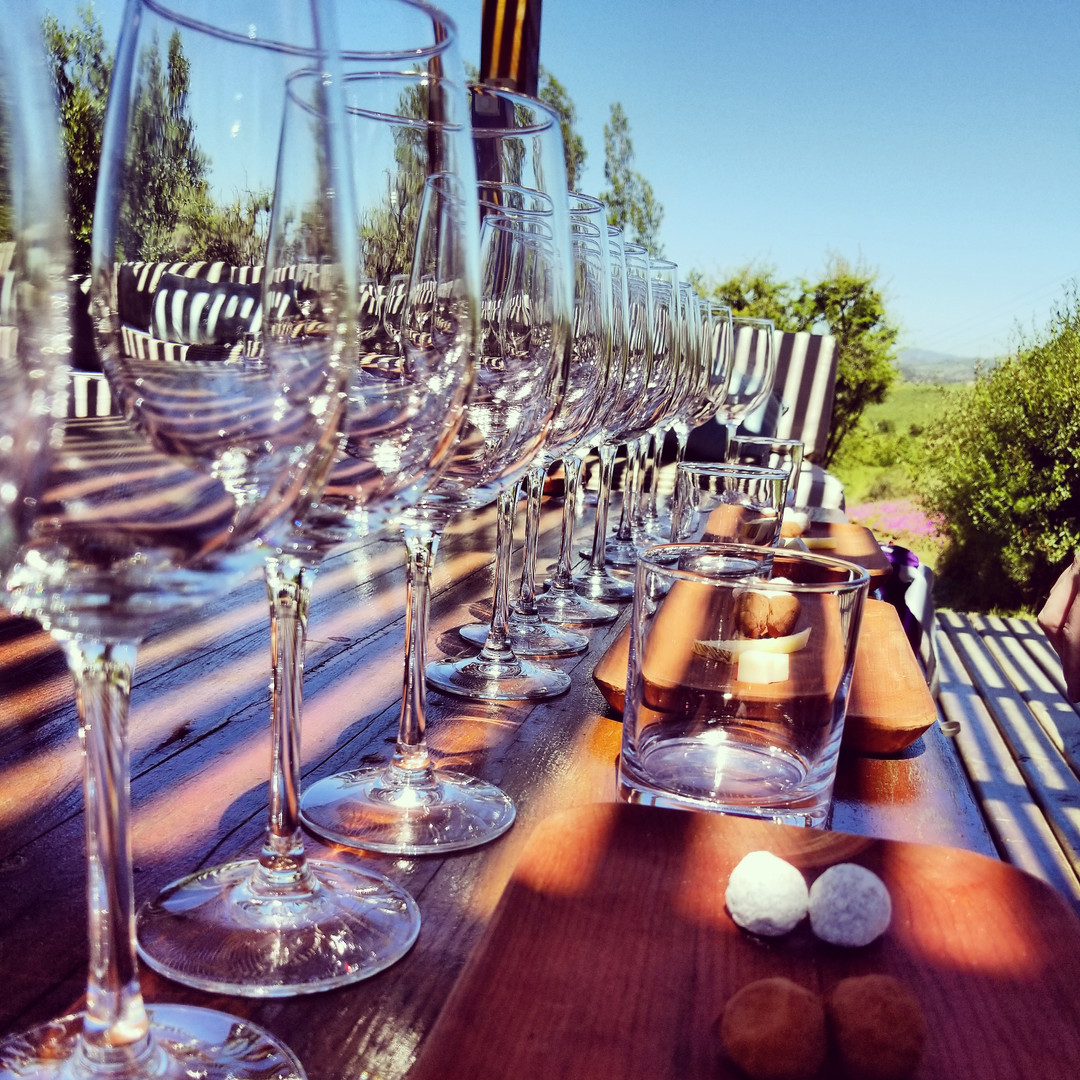 Wine Tasting In Chile