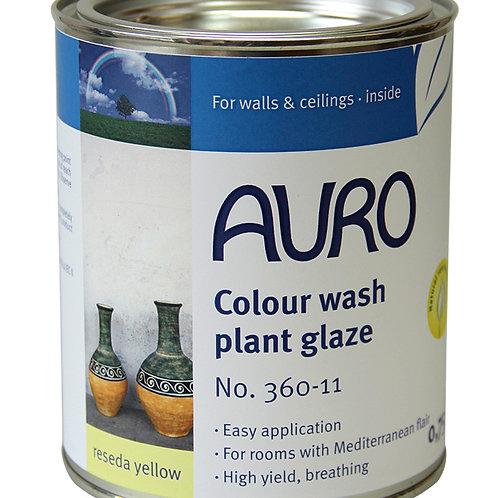 No. 360 - Color wash plant glazes