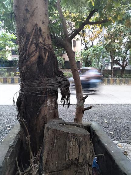 Pranita Deshpande