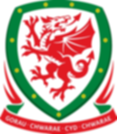 1200px-Football_Association_of_Wales_log
