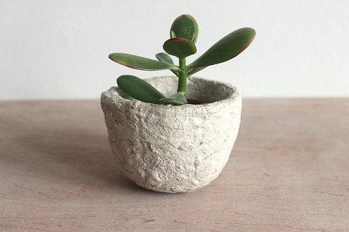 Concrete Stuart