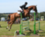 Ludo FH at Gatcombe.jpg