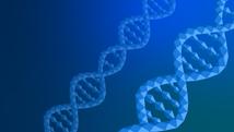 10genetic_code_header.png