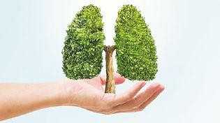 lung-transplant-programme-nhcs-2.jpg