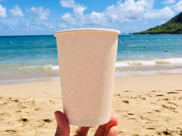 Bagasse Cups