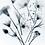 Thumbnail: Kwiaty, zdjęcie-x-ray blue. Plakat 30x40 cm