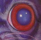 peinture-huile-chihuahua-bleu-oeil