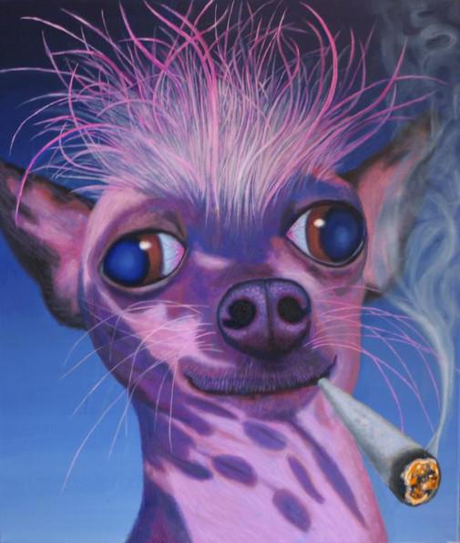 peinture-huile-chien-fue-marijuana-hashisch