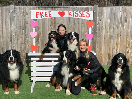 Valentine's Day Party at Stone Dog Inn!